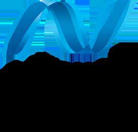 microsoft-net-logo-260